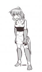 chan -blloody anna wolf